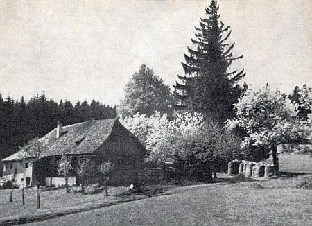 Stará lesovna na Suchém Kameni (Dörrstein)