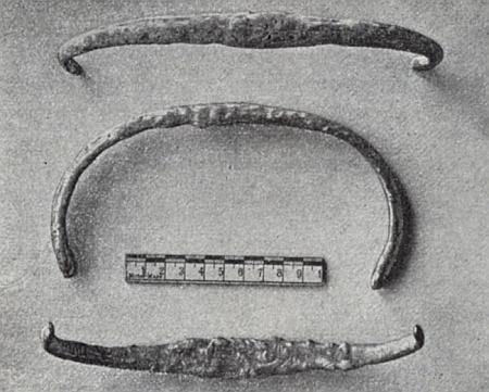 Snímek k jeho zprávě o nálezu ve farském lese u Hochwaldu (dnes zcela zaniklá ves Hvozd)