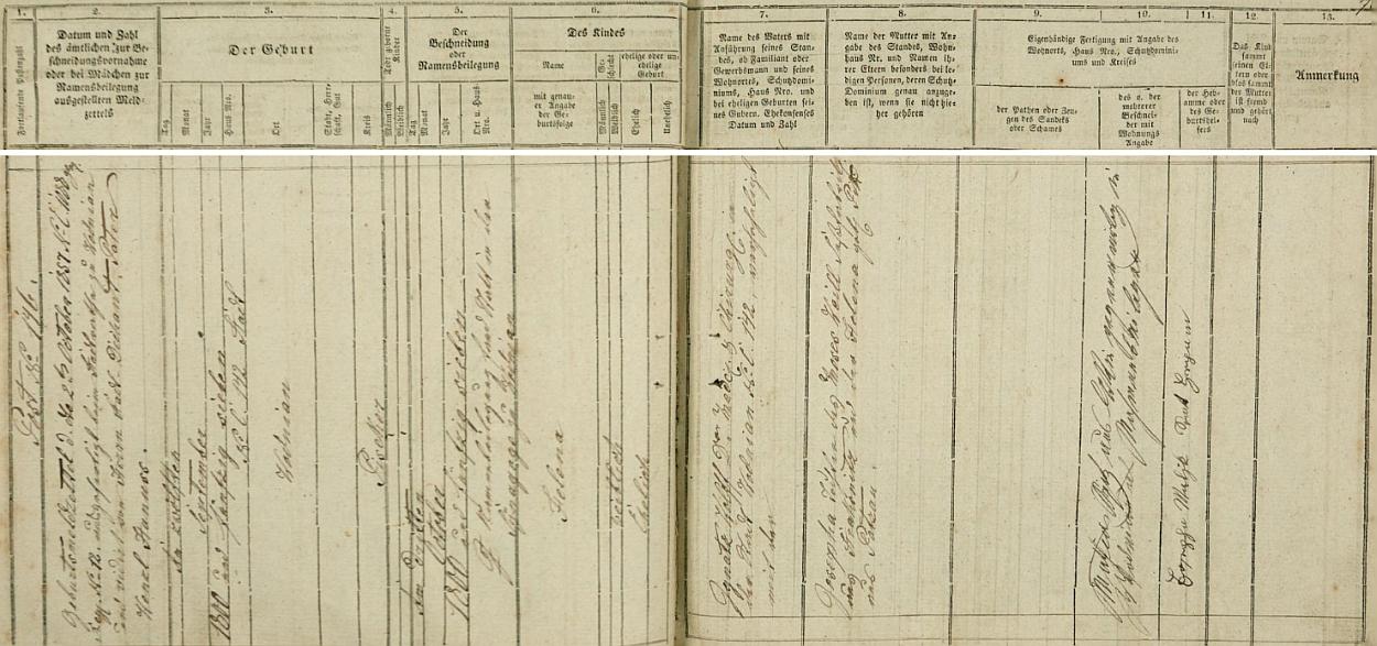 Ve vodňanské židovské matrice nacházíme tento záznam o jejím narození