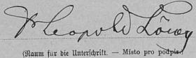 Podpis na archu sčítání lidu z roku 1900