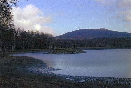 Václavský rybník pod Přimdou