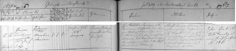 Narodil se podle jáchymovské křestní matriky dne 12. listopadu roku 1859 v Jáchymově (Joachimsthal) čp. 8 c.k. asistentovi zdejšího berního úřadu Florianu Maertnovi (synu Josefa Märtna, hostinského v Libkovicích /Libkowitz/ čp. 9, statek Žlutice /Gut Luditz/, a Caroline, roz. Pöschlové rovněž z Libkovic), a jeho ženě Anně, roz. Miesl, Edle von Zeileisen (tento šlechtický přídomek je odvozen od označení bočního jáchymovského údolí, jímž dnes vede tamní ulice K Lanovce), dceři Ludwiga Mießla, šlechtice (Edler) von Zeileisen, měšťana a obchodníka v Jáchymově čp. 145, aCathariny, roz. Grabové z Kadaně (Kaaden) čp. 163 - byl pak pokřtěn v jáchymovském kostele sv. Jáchyma asv.Anny (jde jinak o prvý vůbec luteránský kostel v Čechách, postavený v letech 1534-1540 a vysvěcený na katolický chrám teprve roku 1624) na jméno Johann Nepomuk Martin Florian Maertn