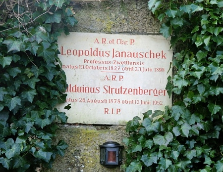 Náhrobní deska Leopolda Janauscheka, autora studie zmiňované v jeho textu, na hřbitově v Heiligenkreuz