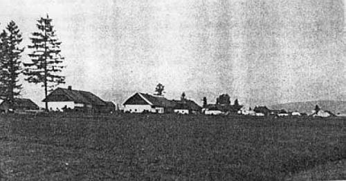 Vzácný snímek vsi Dolní Borková na okraji rozsáhlého rašeliniště