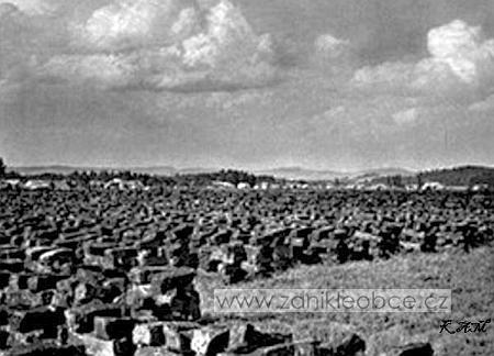 Neostrý snímek se staveními Dolní Borkové v pozadí za rašeliništěm