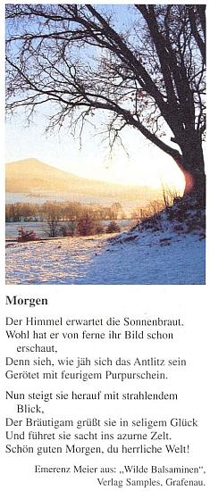 """Její báseň z knihy """"Wilde Balsaminen"""" s barevným snímkem zBavorského lesa na stránkách časopisu DerBayerwald"""