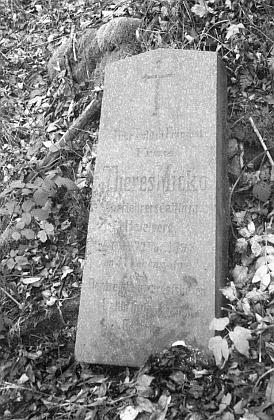 To zůstalo u hřbitova v zaniklé Lučině ležet pohozeno z někdejšího hrobu jeho první manželky Theres Mickové, zemřelé 22. listopadu roku 1897