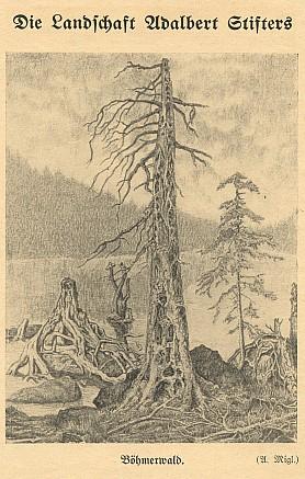 Reprodukce jeho grafiky v časopise Mein Böhmerwald