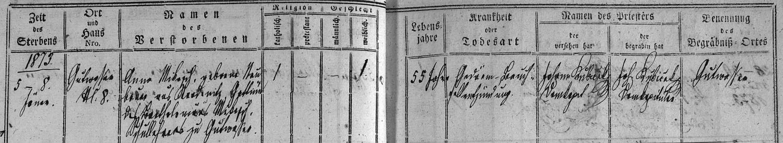 Záznam o skonu jeho první ženy v dobrovodské úmrtní matrice