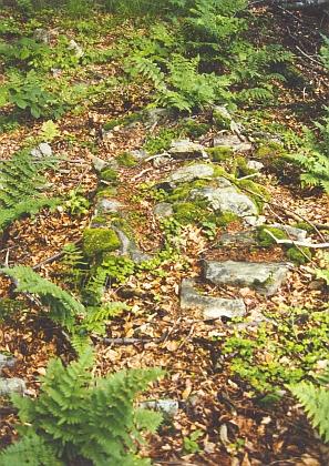 Na hoře Bulový zůstaly zachovány i tyto kamenné schody, podle Milfaita už pohanského původu