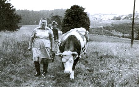 Maminka na polní cestě ve Stadlbergu, jak ji zachytil snímek někdy z roku 1966 s pozadím Pohoří na Šumavě, plného ještě dosud nezbořených stavení