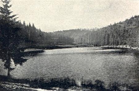 Řasnice (Travnatá Vltava) u jeho rodného Kunžvartu a nedaleké Žďárecké jezírko na snímcích zapomenutého dnes fotografa Dr. Preisslera