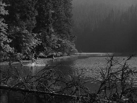 """Záběr z filmu """"Divá Bára"""" u jezera Laka - za citaci určitě stojí odstavec z webových stránek Druidova mystéria: """"Divá Bára ztělesněná Vlastou Fialovou se měla koupat v tajuplném jezeře. Nakonec se herečka nekoupala v ledové vodě osobně, ale byla zastoupena Aničkou Mauelovou, dcerou brusiče skla z Železné Rudy. Filmaři ani tak tajemnému jezeru příliš nevěřili, tak pro koupání vyhradili malý prostor - pod vodou vymezený .... starými umrlčími prkny. (Mezi námi - asi neznali pověsti o zneužití těchto prken, neb pak by se báli ještě více)."""""""