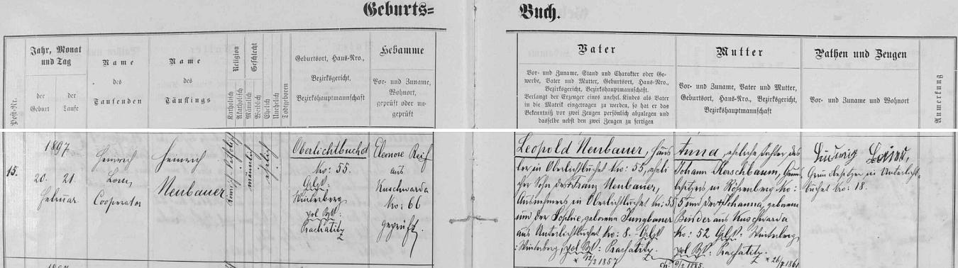 Narodil se podle záznamu kooperátora Jindřicha Loma v křestní matrice farní obce Kunžvart (Kuschwarda, dnes Strážný) dne 20. února roku 1897 (hned následujícího 21. února byl v kunžvartském farním kostele Nejsvětější Trojice také pokřtěn) v Horních Světlých Horách čp. 55 - novorozencův otec Leopold Neubauer byl synem chalupníka Franze Neubauera, který se svou ženou Sophií, roz. Jungbauerovou z Dolních Světlých Hor čp. 8, hospodařil předtím na témže rodném stavení chlapcově čp. 55 v Horních Světlých Horách - novorozencova matka Anna byla pak dcerou Johanna Kerschbauma, vlastníka usedlosti čp. 5 ve Žlíbkách (Röhrenberg), a jeho manželky Johanny, roz. Binderové z Kunžvartu čp. 52