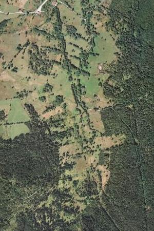Nové Údolí na leteckých snímcích z let 1949 (zčásti i 1952) a 2008