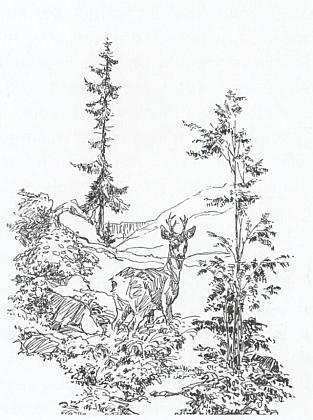 """Jedna z jeho """"loveckých"""" kreseb"""