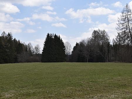 Někdejší Kozí Stráň na snímcích z roku 2021, stromy vpravo jsou podle leteckých snímků původní (viz i Hans Lepschy)