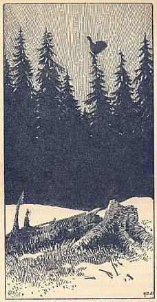 Na Šumavě (grafika podle jeho náčrtku)