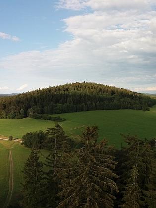 Houbový vrch (Schwammberg)