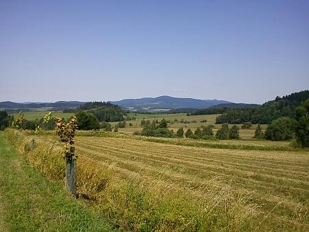 Pohled od Slavkovic u Černé v Pošumaví na Suchý vrch