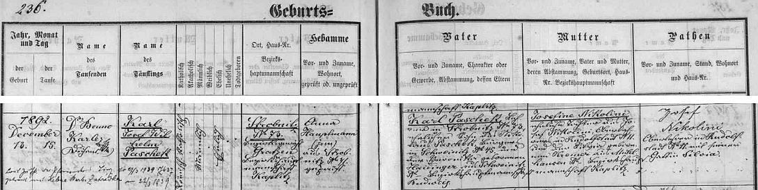 Podle záznamu v matrice Horní Stropnice pocházel jeho otec po rodičích z Trhových Svinů, maminka pak byla dcerou řídícího učitele Nikoliniho z Rudolfova
