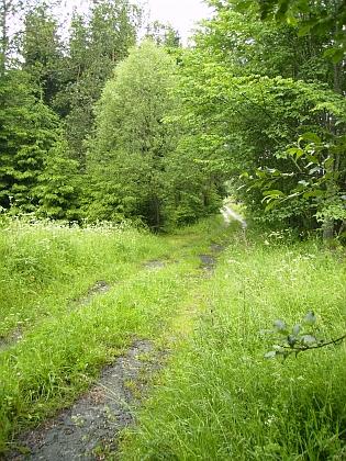 Hůrka od jihu se železniční tratí vpředu a obilným polem už v místech dnešního Lipenského jezera
