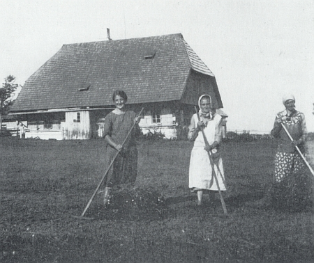 Skupina žen při shrabování sena před jeho rodným domem na Bučině