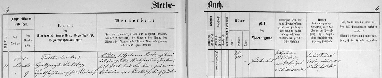 Záznam úmrtní matriky farní obce Knížecí Pláně o mrtvě narozeném a nepokřtěném chlapci zdejšího řídícího učitele Franze Pettera a jeho ženy Anny, roz. Neubauerové, datovaný  9. listopadu roku 1905ý
