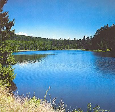 Vodní nádrž Zlatá Ktiš na říčce Černé nedaleko jejího rodiště, vlastně stejnojmenné vsi Schwarzau v Novohradských horách
