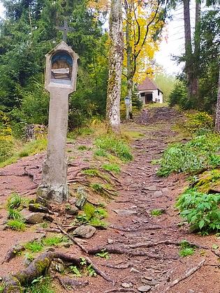 Obnovená křížová cesta ke kapli sv. Anny