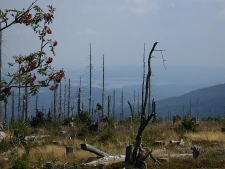 """... a ještě netradiční pohled z hory Plechý - pohled na """"Tajvan"""" (uprostřed snímku) umožnil zničený les..."""