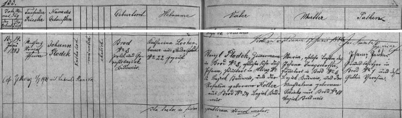 Johann Plodek se narodil podle matriky farní obce Rudolfov ve Vrátě (tehdy nesla ves jméno Brod) čp. 8 Wenzlu Plodekovi z Hlinska a jeho ženě Marii, roz. Jungschafferové - přípis uvádí i datum jeho svatby v Cetvinách 5. září 1911 sLudmilou Slamkovou