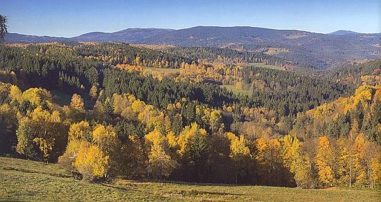 Údolí Zlatého potoka u Řetenic