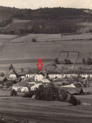 Na výřezu pohlednice Josefa Seidela je škola v Borové označenašipkou