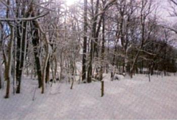 Zimní záběr místa, kde dům čp. 72 stával