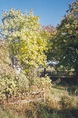 Kříž cestou k Hartunkovu v zimě i v létě (viz i Agnes Gebicke-Hoffelnerová)