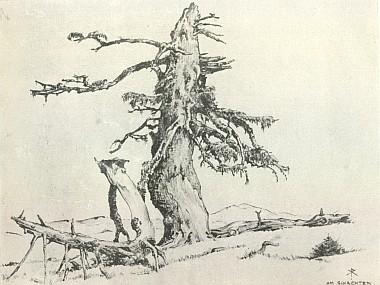 Dvě ilustrace Karla Ramische k básním Georga Pschierera a Hanse Watzlika z téhož svazku, nazvané Jedle ze Šumavy