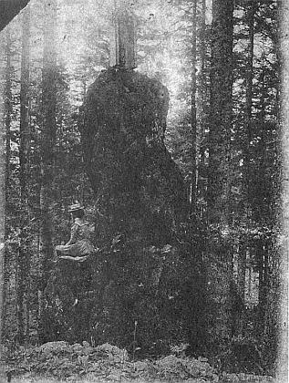 """""""Herrgottriegel"""" na pohlednici staršího data se sedící dámou"""
