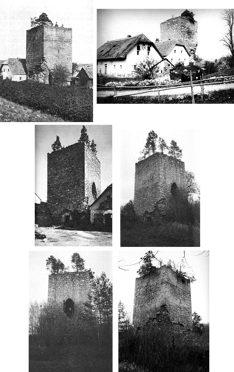 Na věži tvrze v Tiché vyrostly během času celé šumavské stromy