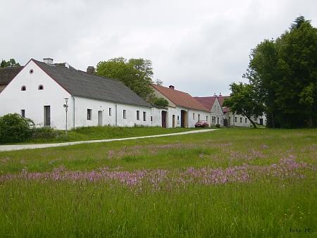 Záběr z rodné Kamenné (2013)