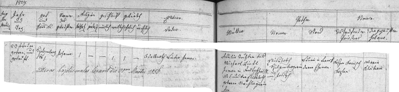 """Záznam v křestní matrice farní obce Želnava i v jejím indexu dosvědčuje, že se narodila 23. února roku 1827 Adalbertu Binderovi a jeho ženě Rosalii, dceři Michaela Liebla z Maňavy (Deutschhaidl) čp. 5 a Elisabeth, roz. Nachlingerové (psáno zde """"Nachlingerin"""", stejně jako ono """"Binderin"""" v indexu coby přechýlené příjmení novorozené Johanny)"""
