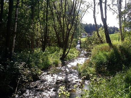U Ktišského rybníka byl v podrostu lužního lesa kanál patrný až do současnosti (stav po rekonstrukci rybníka v roce 2010)