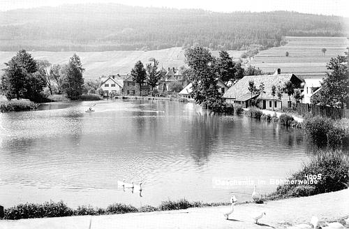 Idylická pohlednice firmy Seidel z Dešenic pochází asi z roku 1937