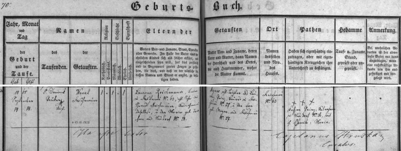 Záznam o narození jeho otce Wenzla Reichenauera dne 14. září 1861 v Rychnově u Nových Hradů čp. 63, kde hospodařil jeho otce Laurenz Reichenauer se svou ženou Agnes, roz. Prinzovou z rychnovského stavení čp. 27, a kde na výměnku bydlili i děd Thomas Reichenauer a jeho žena Maria, roz. Trillsamová z Kondrače (Neudorf) čp. 28 - pozdější přípis uvádí datum skonu Wenzla Reichenauera dne 13. listopadu roku 1937