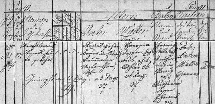 Záznam o jeho narození v křestní matrice farní obce Dubné