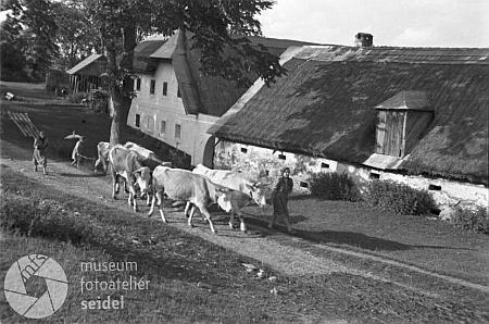 Tento snímek z Tisovky vznikl v roce 1946