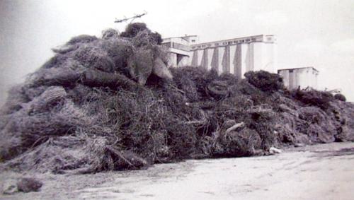 Železná opona po roce 1989 jako sběrná surovina u Kovošrotu Domažlice