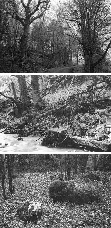 Snímky ze zaniklého Josefodolu pořízené na jaře roku 1999 (vizi Walburga Beutlová, Walter Franz, Hermine Kimbacherová)