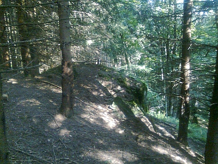 Dnes je skalka na Pestřickém vrchu dávno bez Roseggerova portrétu a obklopená lesem (za její nalezení vnepřehledném terénu děkujeme Martinu Peškovi z Horní Plané)