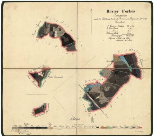 Porostní mapa revíru Forbes (Borovany), kterou zakreslil v roce 1875 (klikněte na náhled pro digitalizovanou mapu)